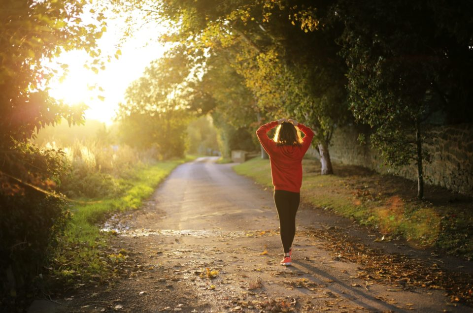 Exercise Essentials for The Absolute Beginner