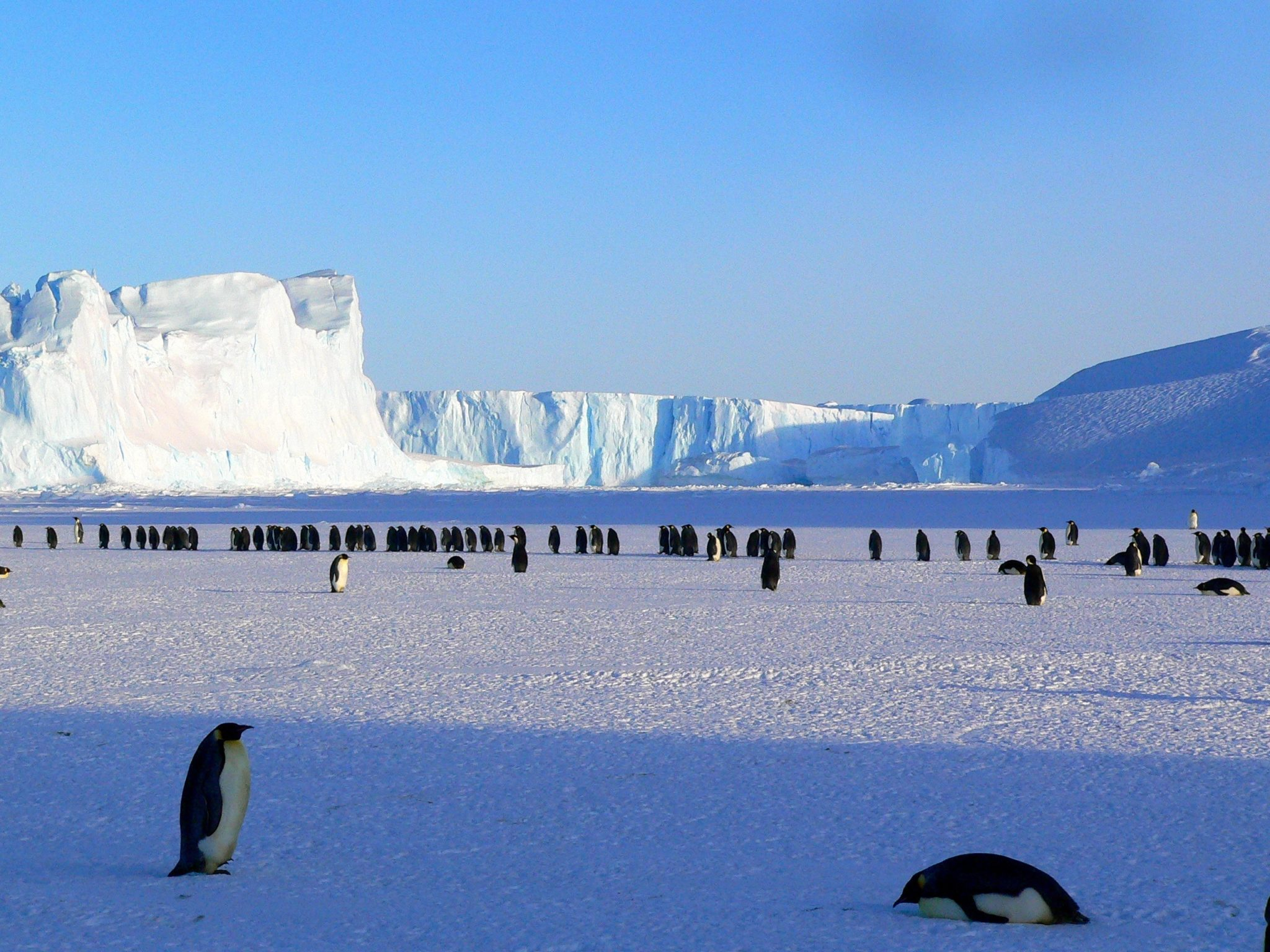 Why you should travel to Antarctica